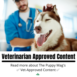 Veterinarian Approved Content1